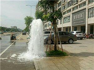今天上午海桂学校附近路边消防栓喷水中,挺大的。。。