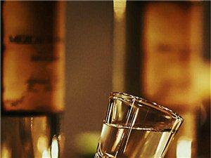 我有一壶酒,足以慰风尘,尽倾江海里,赠饮