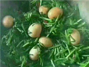 韭菜炒鸡蛋?