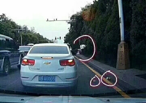 在争创文明城市的紧要关头出现的无良司机