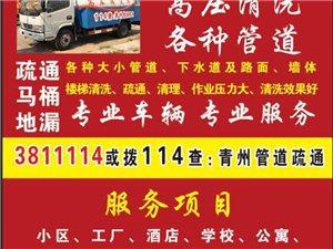 青州456专业搬家,专业搬红木家具,钢琴,鱼缸