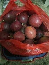 自家种植的百香果,果大,有需要请联系