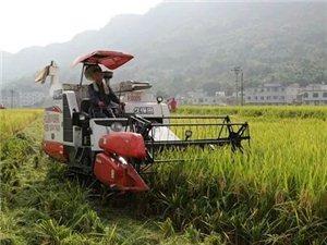 【通告】关于稳控水稻机收价格!