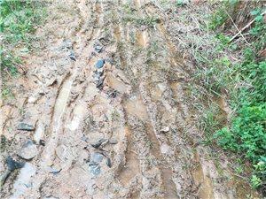 呼吁有关部门领导体恤民情,这里的泥巴路何