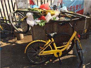 共享单车变垃圾了
