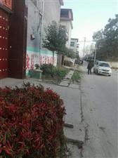 杨树郭村,变化大了去了