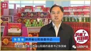 山阳县委书记央视财经频道为山阳核桃大力宣传