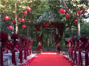 想在临泉做个真正的婚庆公司,有没有一起做