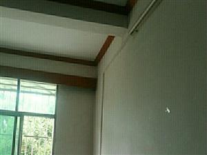 专业室内墙体除霉