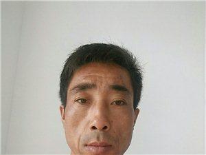 【帅男秀场】刘彦龙
