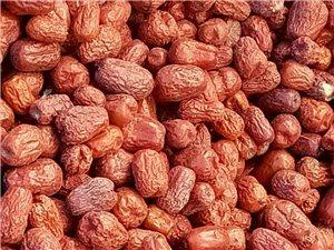 2017瓜州自产骏枣上市帮助农民销售