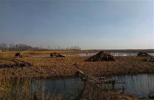再游麻大湖