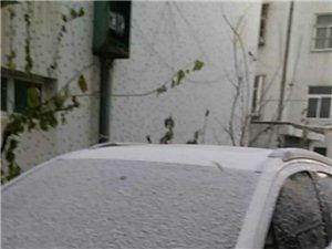 下雪了,快看看吧!……