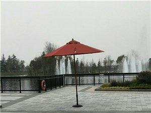 上海没有冬天,老家有冬天,很怀念
