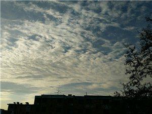 上午的天�獠诲e,�{天白云,留���o念。