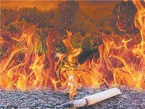 烟头虽小,火患无穷!