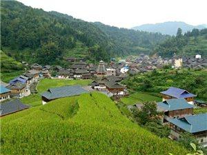 《黔游攻略》之黔东南原生态旅游-优德88金殿县