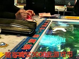 什么原因造成赌博机的猖獗