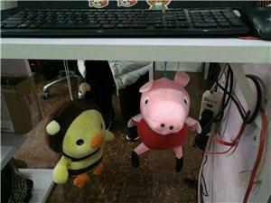小猪佩奇。哈哈