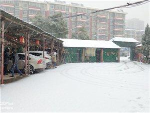 隆冬�D月漫天雪花,跟��城的�D�更配喔!