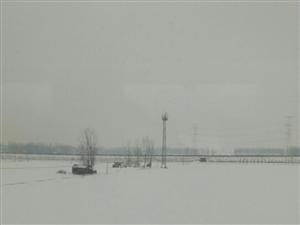 坐在高铁上望过去一片白茫茫的大地