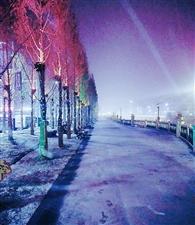 山阳县今年的雪景图,每一张都可做屏保!