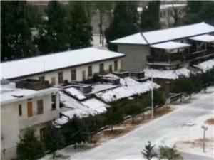 这是啥天气哦,广东今年也下雪了