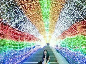 深圳本地游记:求水山公园(灯光节)