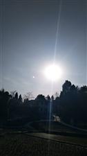 咱农村的太阳。