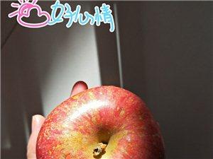 虽说北方产苹果多,但吃了四川苹果…