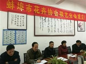 蚌埠市花卉协会根艺分会在美高梅注册成立
