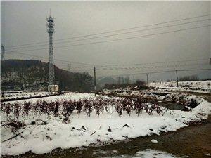 雪痕�o�。