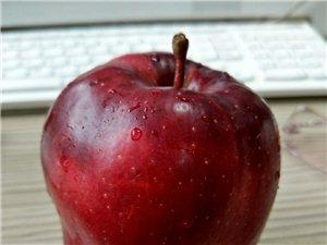 蛇果跟红苹果怎么区分?这个是?