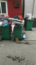满大街的垃圾桶都这么满满当当,也不知道环