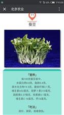 绿山谷芽苗菜落户凌源