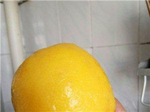 《格格妈咪纯手工秘制川贝柠檬膏》