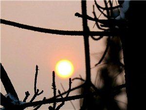小雪后的太阳