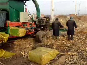 玉米秸秆粉碎压块