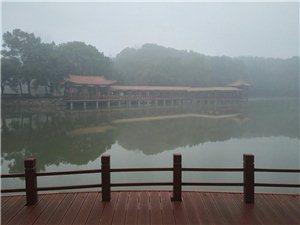 雾中的五柳公园