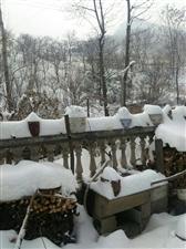 又是一段下雪天,没法转钱在家玩,不吃酒不