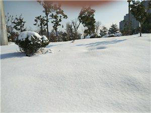 雪还是家里好