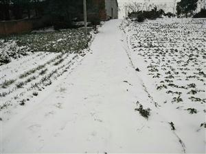 2018年的第二场雪