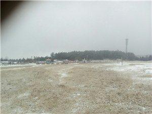 这里有鹅毛大雪!
