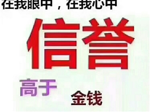 栾川县盛海源人力资源服务有限公司