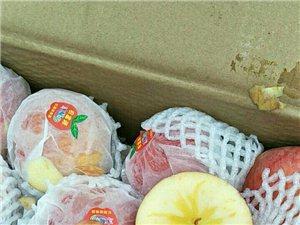 新疆阿克苏正宗糖芯苹果