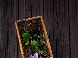 ??人生就要像花一样,不管有没有人欣赏