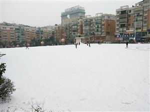 镇雄人大雪天步行丈量镇雄(二)