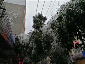 镇雄县城,看看这些图片就知道有多冷