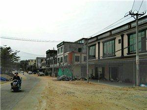 """""""候鸟""""热闹青葛港,体验渔村小年儿味(纪实)"""