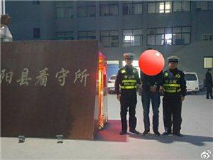 山阳交警查处新年首例饮酒驾驶营运车辆违法